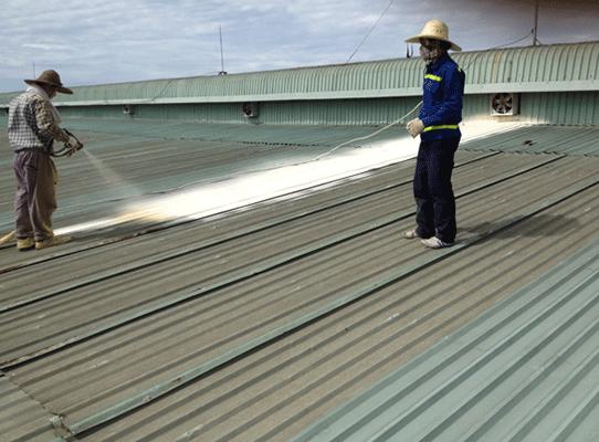 Vệ sinh mái tôn nhà xưởng