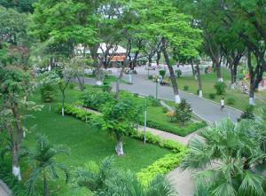 Chăm sóc cây xanh lấy bóng
